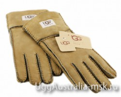 UGG GLOVE CHESTNUT