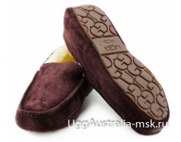 UGG MENS ASCOT CHOCOLATE
