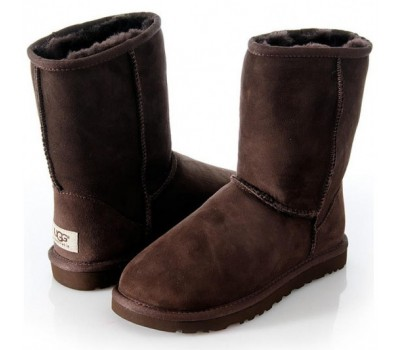UGG MENS CLASSIC SHORT CHOCOLATE