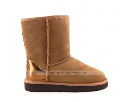 UGG SHORT II METALLIC NEW DRIFTWOOD